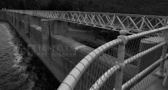 TORIELEN PHOTOGRAPHY - Along Mundaring Weir BW
